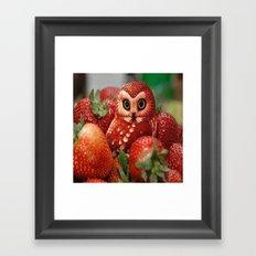 Owl_Strawberry Framed Art Print