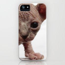 Freaky Cute Furless Sphynx Kitten iPhone Case
