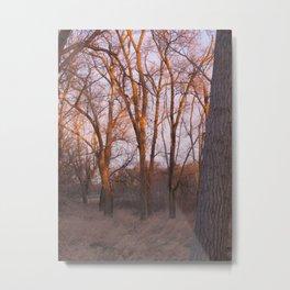 North Platte River Metal Print