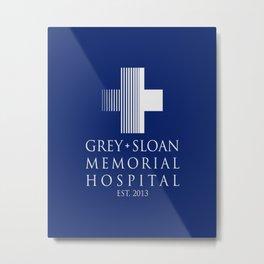 GSMH 2013 Metal Print