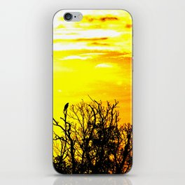 lonely crow iPhone Skin