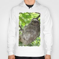 sloths Hoodies featuring Sloths in Nature by Amber Galore Design