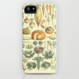 Vegetable Identification Chart iPhone Case