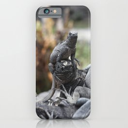 Funny animals - two marine iguanas in the Galapagos iPhone Case
