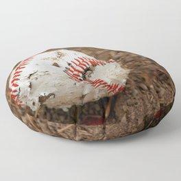 Old Baseball Floor Pillow