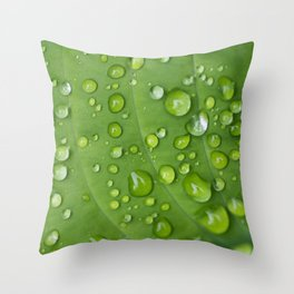Rain Drops on Hosta Throw Pillow
