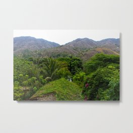 Dreamy Mexican Jungle Metal Print