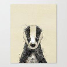 little badger Canvas Print