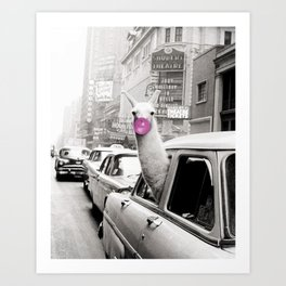 Perfect Pink Bubble Gum Llama taking a New York Taxi black and white photograph Art Print