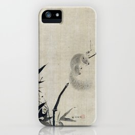 Kano Tan'yū Squirrel on Bamboo iPhone Case