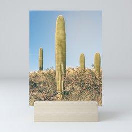 Saguaros  Mini Art Print