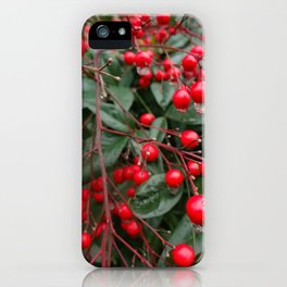 Winter Berries 8x12 iPhone Case