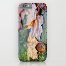 Shaking down the acorns iPhone 6s Slim Case
