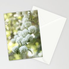 White Hydrangea at beautiful backlight- Flowers Floral Stationery Cards