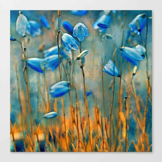 Bluebells. Canvas Print