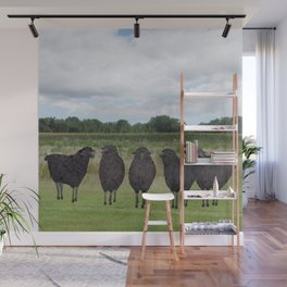 5 black sheep Wall Mural