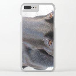 Black Dog Clear iPhone Case