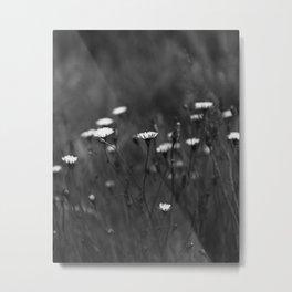 IMAGE: N°33 Metal Print