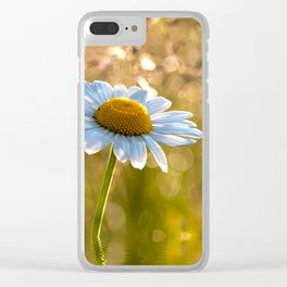 Floral Daisy Flower Flowers in a meadow after rain Clear iPhone Case