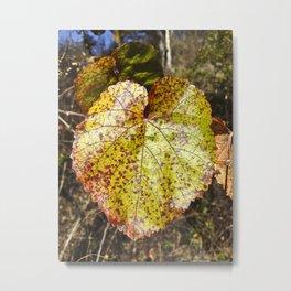 Autumn In The Wild Metal Print