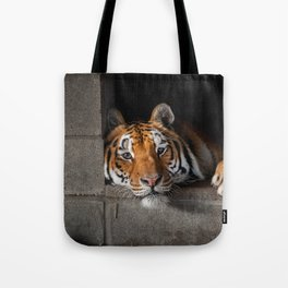 Cincinnati in His Den Tote Bag