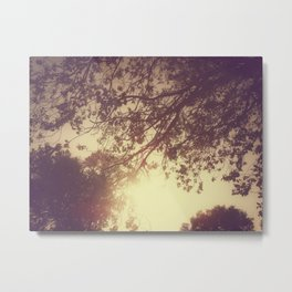 Lost in the Trees:  Yellow Metal Print