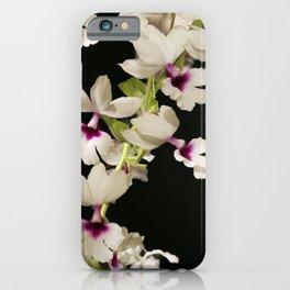 Calanthe rosea Orchid iPhone Case