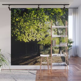 The Woods in Spring Wall Mural