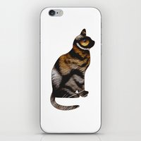 sia iPhone & iPod Skins featuring THE TIGER WITHIN by Catspaws