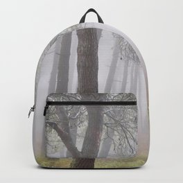 Magic Morning. Into The Foggy Forest. Spring Backpack