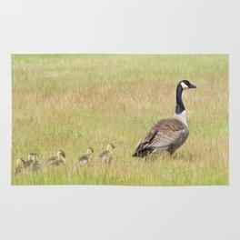 Goslings following mama Canada Goose Rug