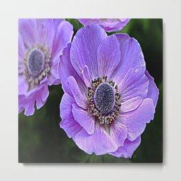 Remembrance Purple Poppy Flower Metal Print