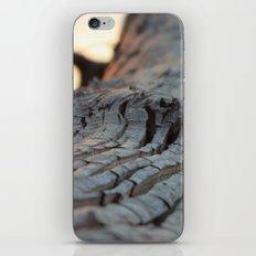 albero sapiente iPhone & iPod Skin