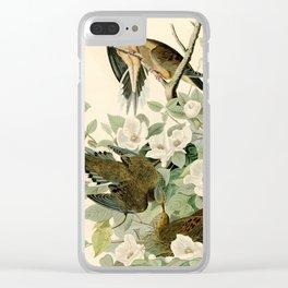 Carolina Turtle Dove (Zenaida macroura) Clear iPhone Case