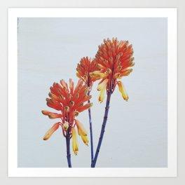 Fire sticks Art Print