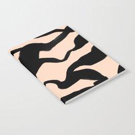 Erosion Notebook