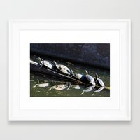 turtles Framed Art Prints featuring turtles by sannngat