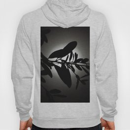 Lost in Moonlight Hoody