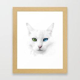 Dutchess the Cat Framed Art Print