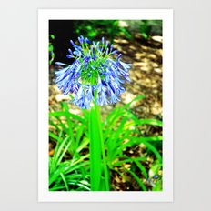 PurpleFlowers2 Art Print