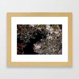 blossom by night Framed Art Print