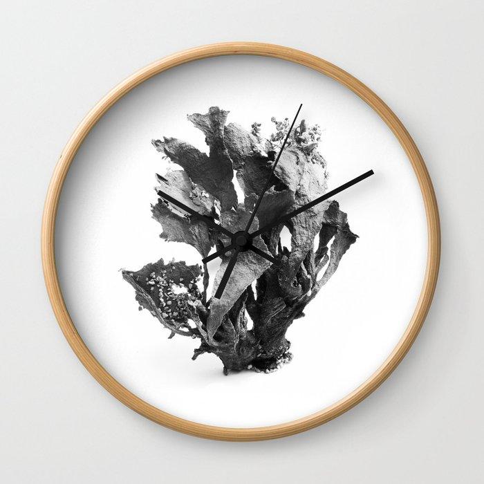 Sea Weed Wall Clock
