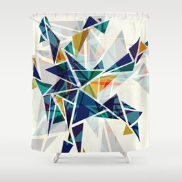 Cracked I Shower Curtain