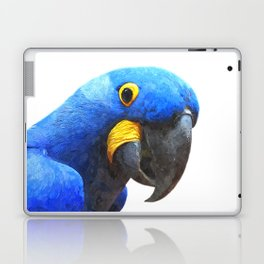 Blue Parrot Portrait Laptop & iPad Skin