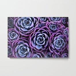 Succulent Garden Pink Purple Periwinkle Metal Print