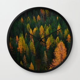 The Evergreens (Color) Wall Clock