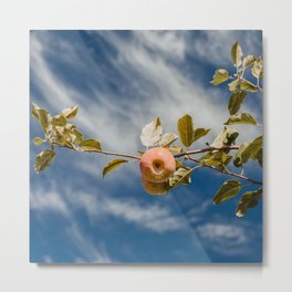 Autumn Apple V Metal Print