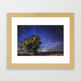 Geminid Meteor Shower 2012 Framed Art Print