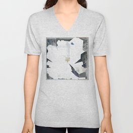 Time a rabbit and a cat Unisex V-Neck