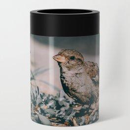 Summer Sparrow. Bird Photograph Can Cooler